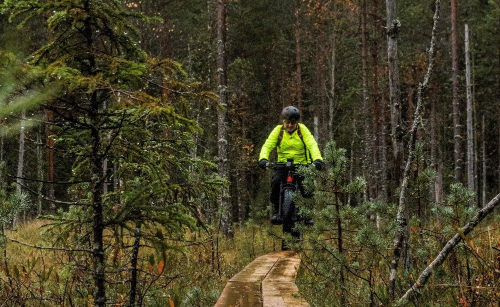 Kuukauden ulkoiluteko: Häähninmäen polkureitistö Hankasalmella soveltuu monenlaiseen ulkoiluun ja retkeilyyn