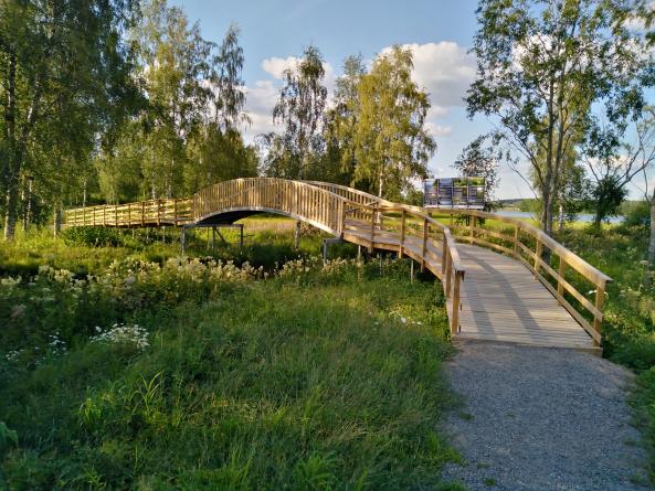Uuden sillan ja luontopolun ansiosta ihmiset ovat pääseet lähemmäs luontoa. Kuva: Timo Rintala