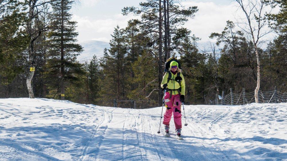 Suomen Ladun saama valtionapu nousi viime vuodesta